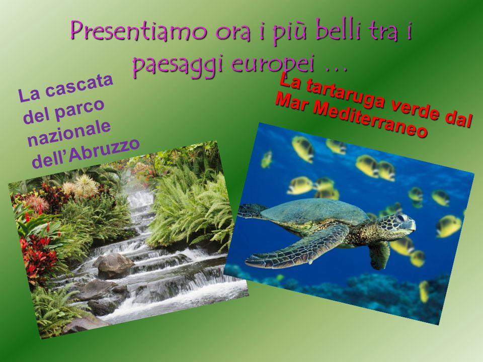 Presentiamo ora i più belli tra i paesaggi europei … La tartaruga verde dal Mar Mediterraneo La cascata del parco nazionale dellAbruzzo