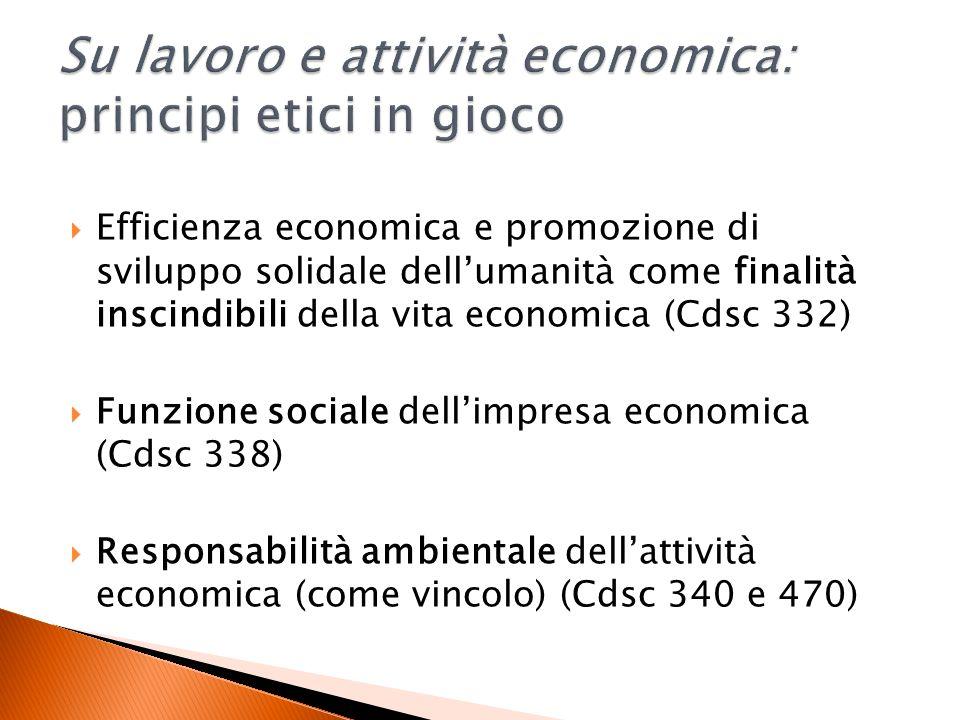Efficienza economica e promozione di sviluppo solidale dellumanità come finalità inscindibili della vita economica (Cdsc 332) Funzione sociale dellimpresa economica (Cdsc 338) Responsabilità ambientale dellattività economica (come vincolo) (Cdsc 340 e 470)