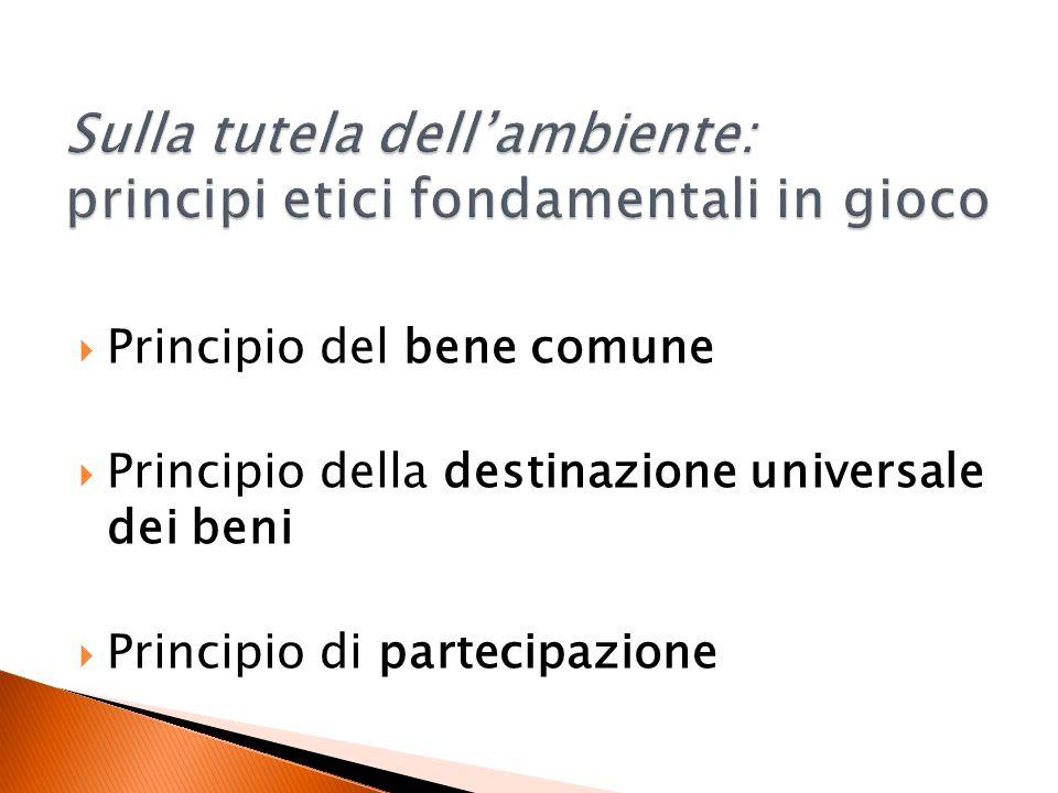 Principio del bene comune Principio della destinazione universale dei beni Principio di partecipazione