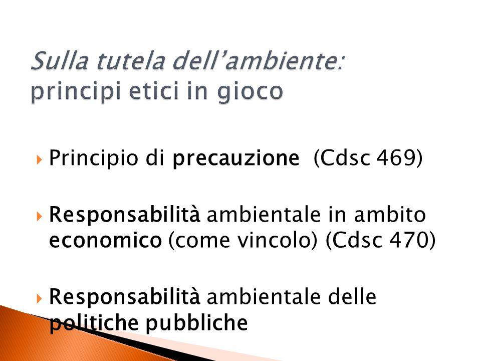 Principio di precauzione (Cdsc 469) Responsabilità ambientale in ambito economico (come vincolo) (Cdsc 470) Responsabilità ambientale delle politiche pubbliche