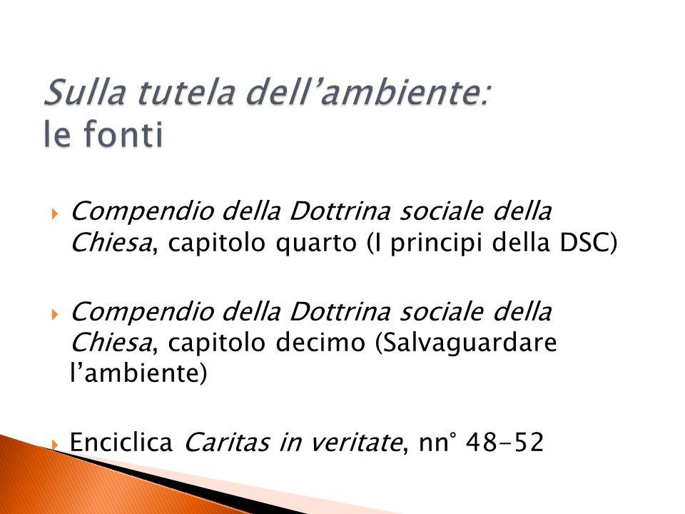 Compendio della Dottrina sociale della Chiesa, capitolo quarto (I principi della DSC) Compendio della Dottrina sociale della Chiesa, capitolo decimo (Salvaguardare lambiente) Enciclica Caritas in veritate, nn° 48-52