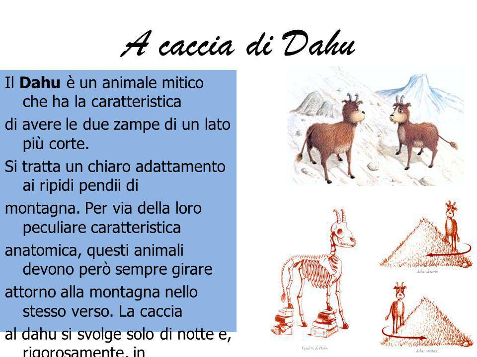 A caccia di Dahu Il Dahu è un animale mitico che ha la caratteristica di avere le due zampe di un lato più corte. Si tratta un chiaro adattamento ai r