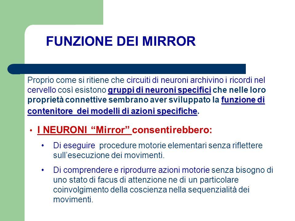 gruppi di neuroni specifici funzione di contenitore dei modelli di azioni specifiche Proprio come si ritiene che circuiti di neuroni archivino i ricor