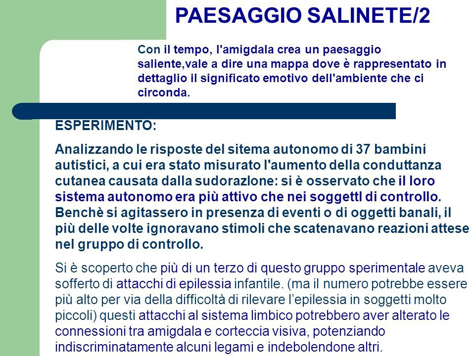 PAESAGGIO SALINETE/2 ESPERIMENTO: Analizzando le risposte del sitema autonomo di 37 bambini autistici, a cui era stato misurato l'aumento della condut
