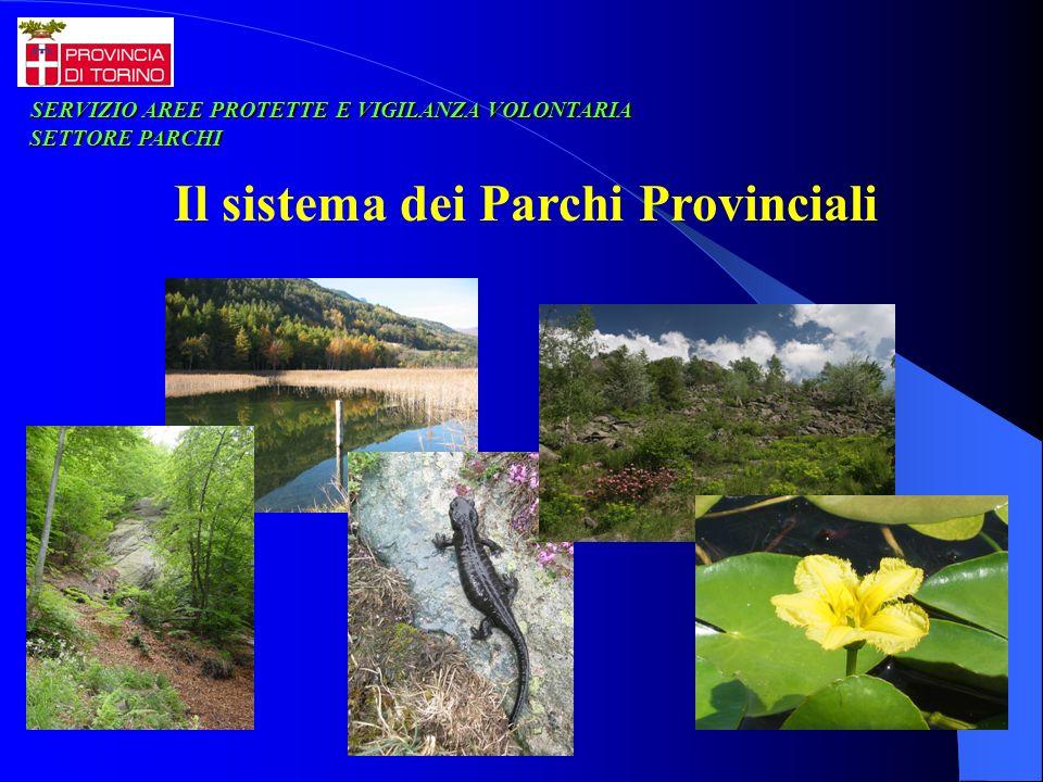 Il sistema dei Parchi Provinciali SERVIZIO AREE PROTETTE E VIGILANZA VOLONTARIA SERVIZIO AREE PROTETTE E VIGILANZA VOLONTARIA SETTORE PARCHI SETTORE P