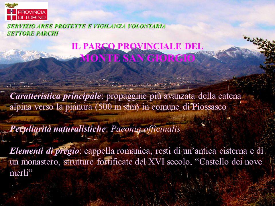 IL PARCO PROVINCIALE DEL MONTE SAN GIORGIO Caratteristica principale: propaggine più avanzata della catena alpina verso la pianura (500 m slm) in comu