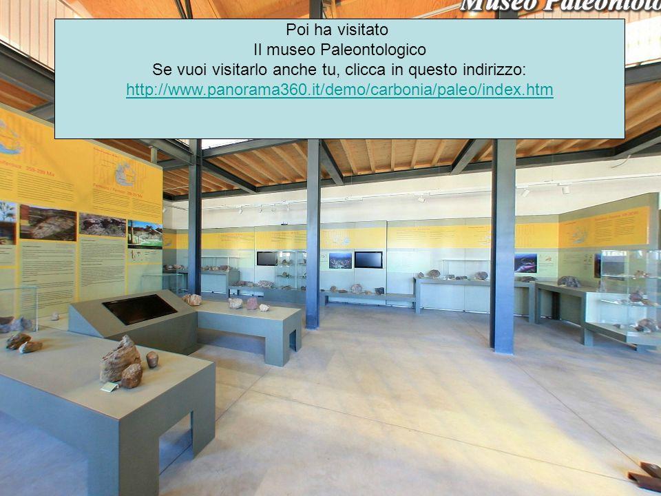 Poi ha visitato Il museo Paleontologico Se vuoi visitarlo anche tu, clicca in questo indirizzo: http://www.panorama360.it/demo/carbonia/paleo/index.ht