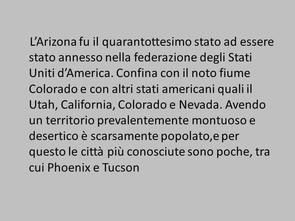 Larido deserto di Sonora La regione del Colorado Plateau LAltopiano Messicano