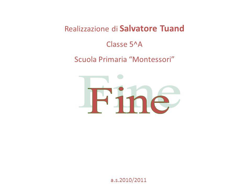 Realizzazione di Salvatore Tuand Classe 5^A Scuola Primaria Montessori a.s.2010/2011