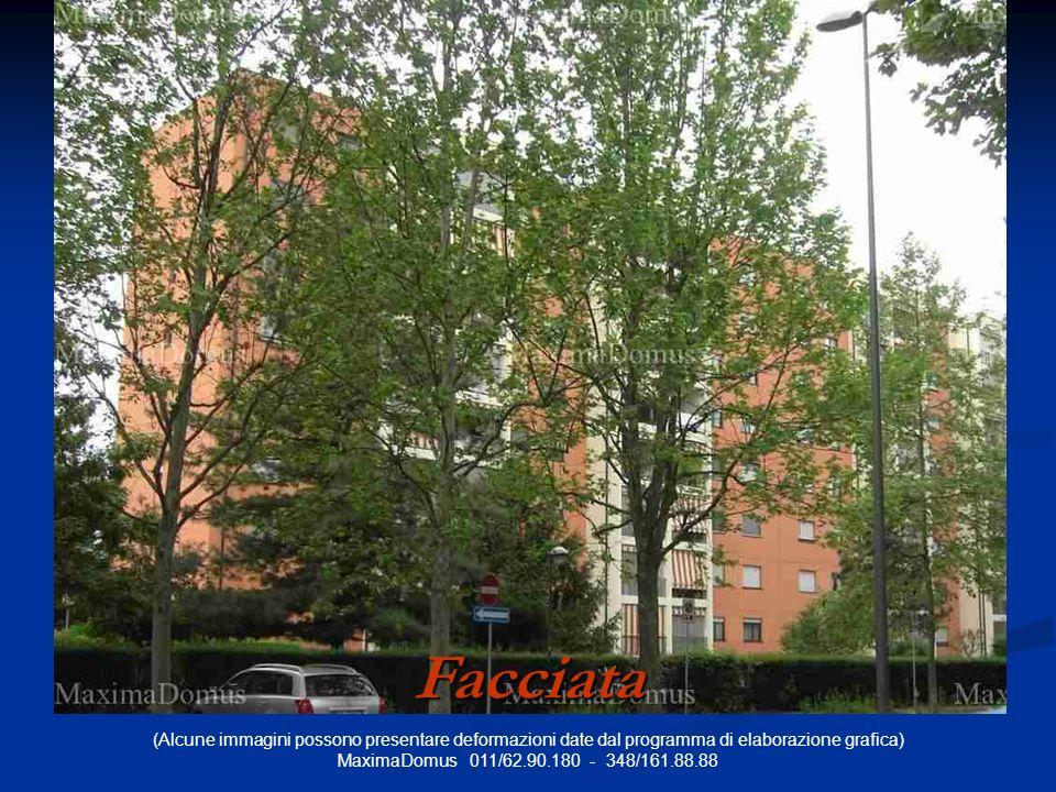 (Alcune immagini possono presentare deformazioni date dal programma di elaborazione grafica) MaximaDomus 011/62.90.180 - 348/161.88.88 Facciata
