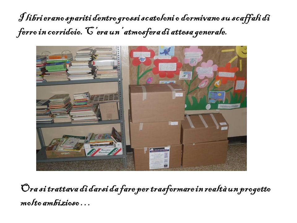 I libri erano spariti dentro grossi scatoloni o dormivano su scaffali di ferro in corridoio. Cera un atmosfera di attesa generale. Ora si trattava di