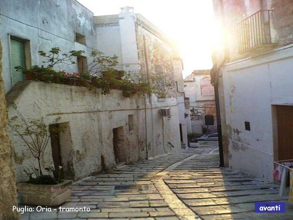 Puglia: La Foresta Umbra avanti