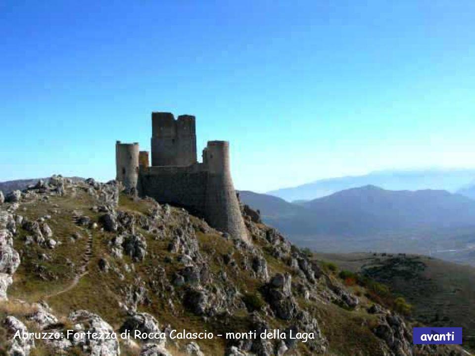 Abruzzo: Parco Nazionale - camoscio avanti