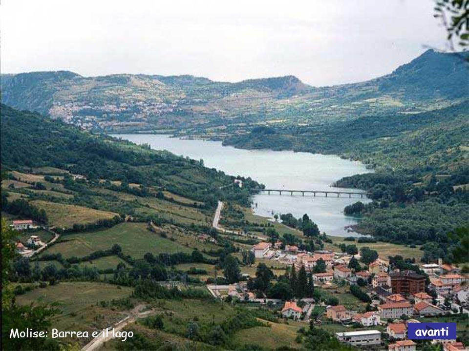 MOLISE Il Molise è una regione dell Italia centromeridionale.