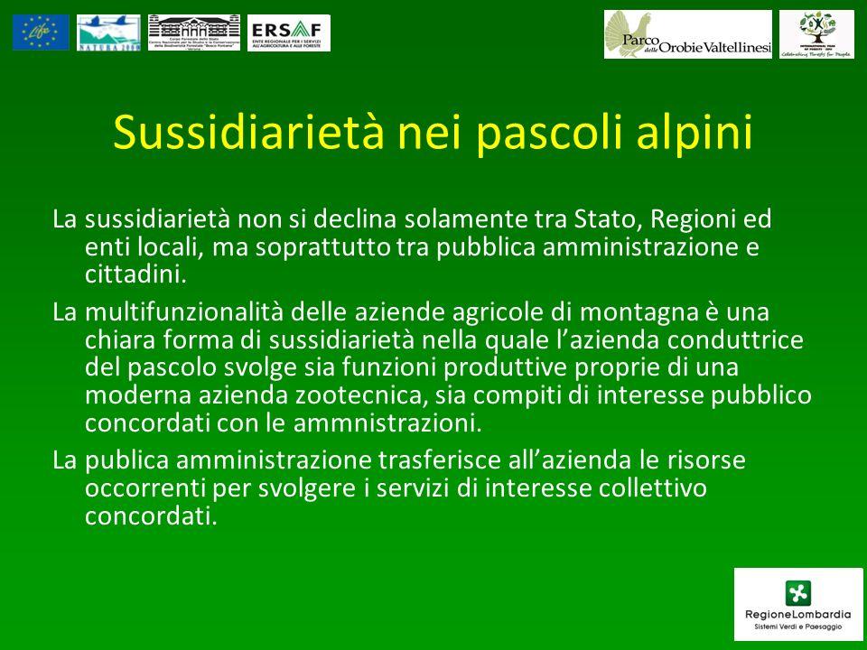 Sussidiarietà nei pascoli alpini La sussidiarietà non si declina solamente tra Stato, Regioni ed enti locali, ma soprattutto tra pubblica amministrazi