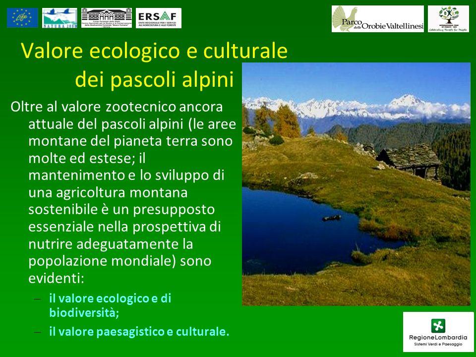 Valore ecologico e culturale dei pascoli alpini Oltre al valore zootecnico ancora attuale del pascoli alpini (le aree montane del pianeta terra sono m