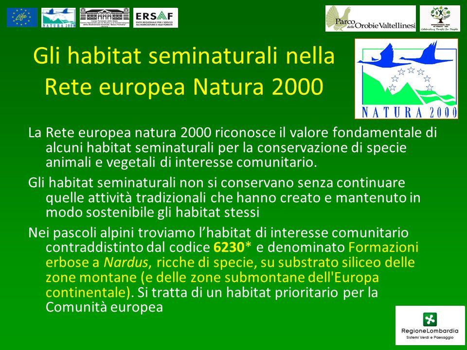 Gli habitat seminaturali nella Rete europea Natura 2000 La Rete europea natura 2000 riconosce il valore fondamentale di alcuni habitat seminaturali per la conservazione di specie animali e vegetali di interesse comunitario.