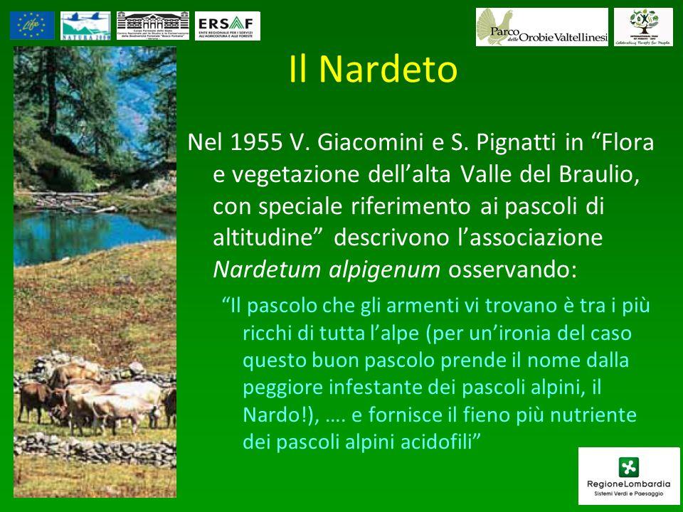 Il Nardeto Nel 1955 V. Giacomini e S. Pignatti in Flora e vegetazione dellalta Valle del Braulio, con speciale riferimento ai pascoli di altitudine de