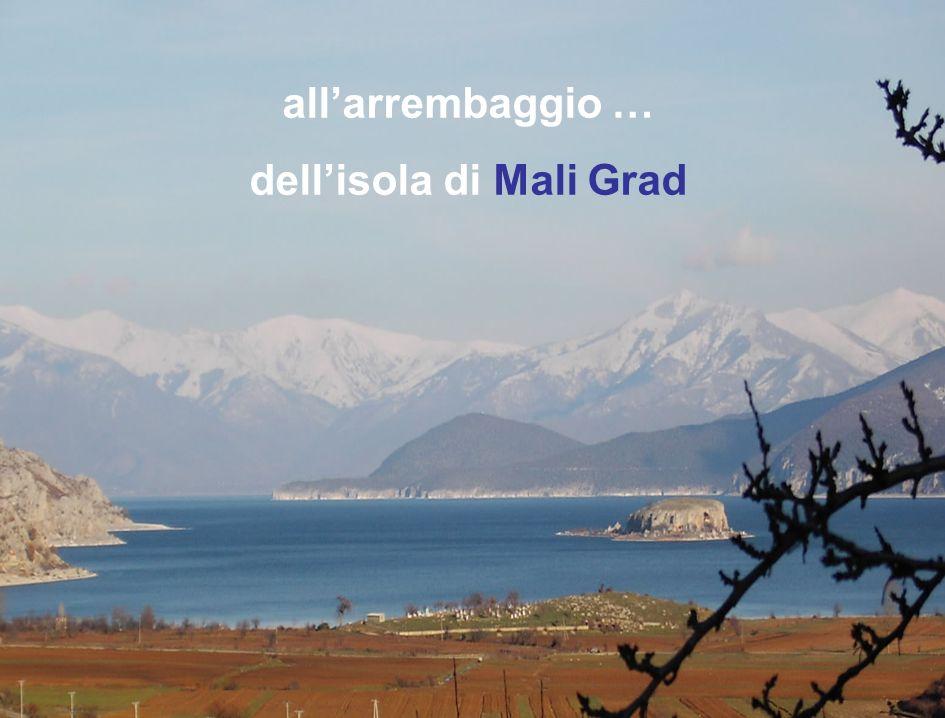 parco nazionale di Prespa >>>>>>>>>> G iorno 5 I tinerario giugno 2006 >>>>>>>>>> il più grande di tutta lALBANIA allarrembaggio … dellisola di Mali Grad