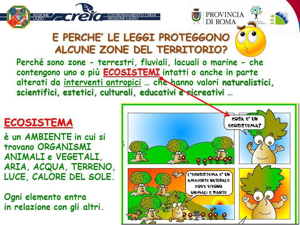 EQUILIBRIO ECOLOGICO Mantenendo lEQUILIBRIO ECOLOGICO cioè la presenza di tutti i suoi componenti: animali, piante, acqua, luce, aria, ecc.