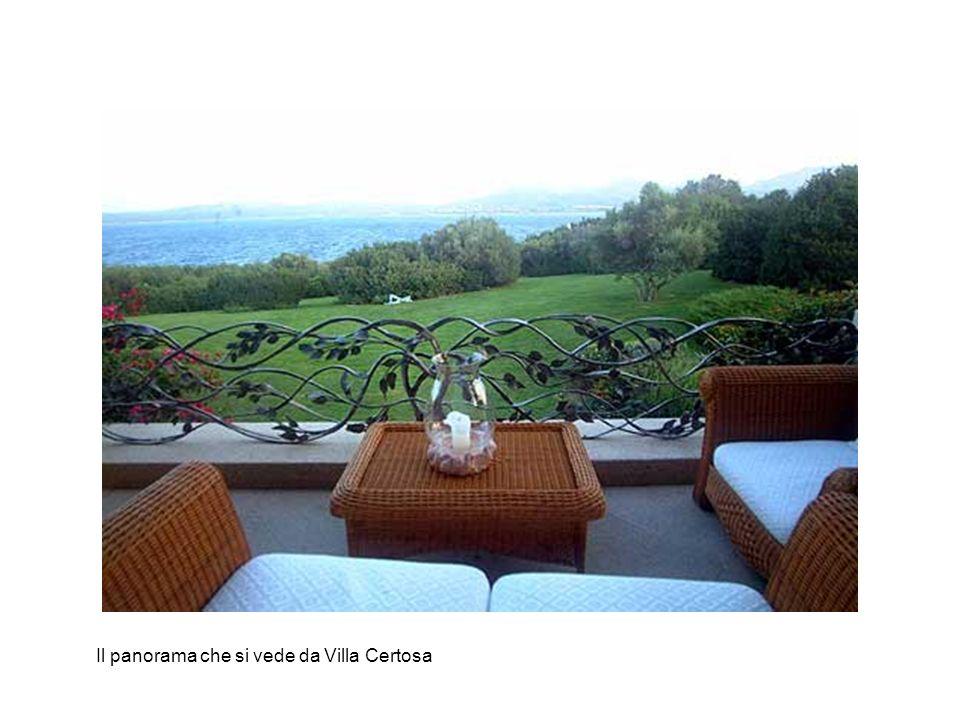 Il panorama che si vede da Villa Certosa