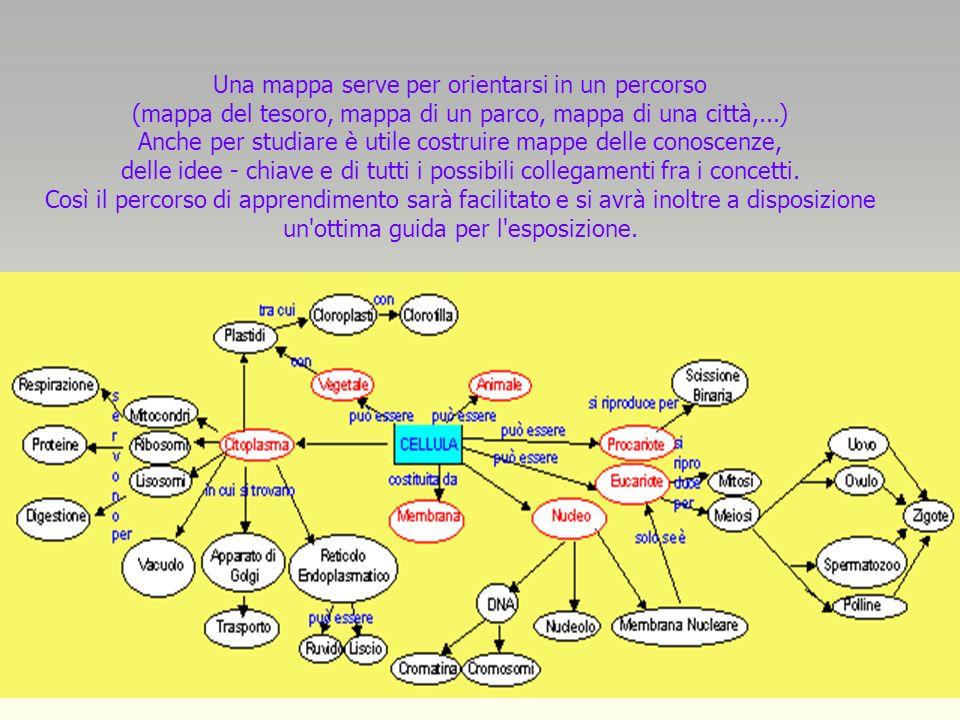 Una mappa serve per orientarsi in un percorso (mappa del tesoro, mappa di un parco, mappa di una città,...) Anche per studiare è utile costruire mappe delle conoscenze, delle idee - chiave e di tutti i possibili collegamenti fra i concetti.