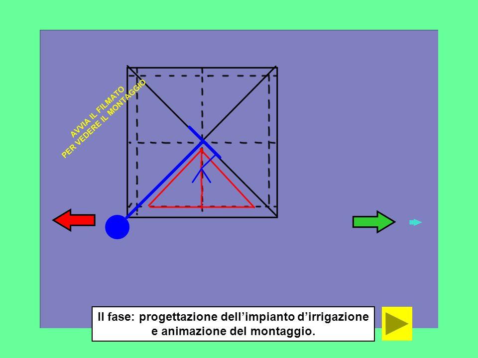 II fase: progettazione dellimpianto dirrigazione e animazione del montaggio.