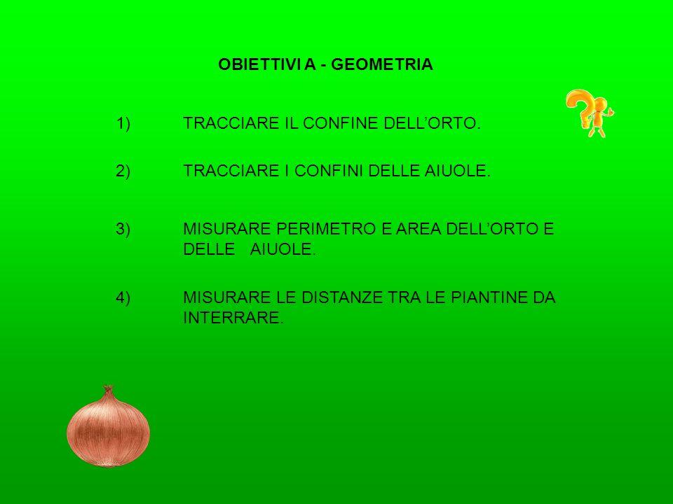 OBIETTIVI A - GEOMETRIA 1)TRACCIARE IL CONFINE DELLORTO. 2)TRACCIARE I CONFINI DELLE AIUOLE. 4)MISURARE LE DISTANZE TRA LE PIANTINE DA INTERRARE. 3)MI