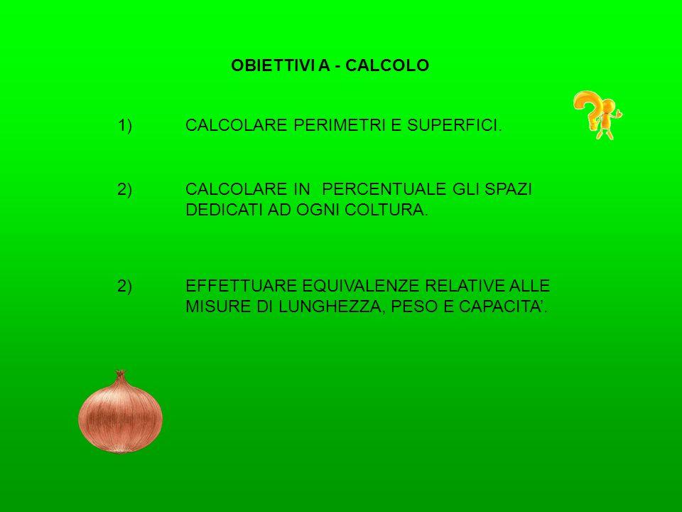 OBIETTIVI A - CALCOLO 1)CALCOLARE PERIMETRI E SUPERFICI. 2)EFFETTUARE EQUIVALENZE RELATIVE ALLE MISURE DI LUNGHEZZA, PESO E CAPACITA. 2)CALCOLARE INPE