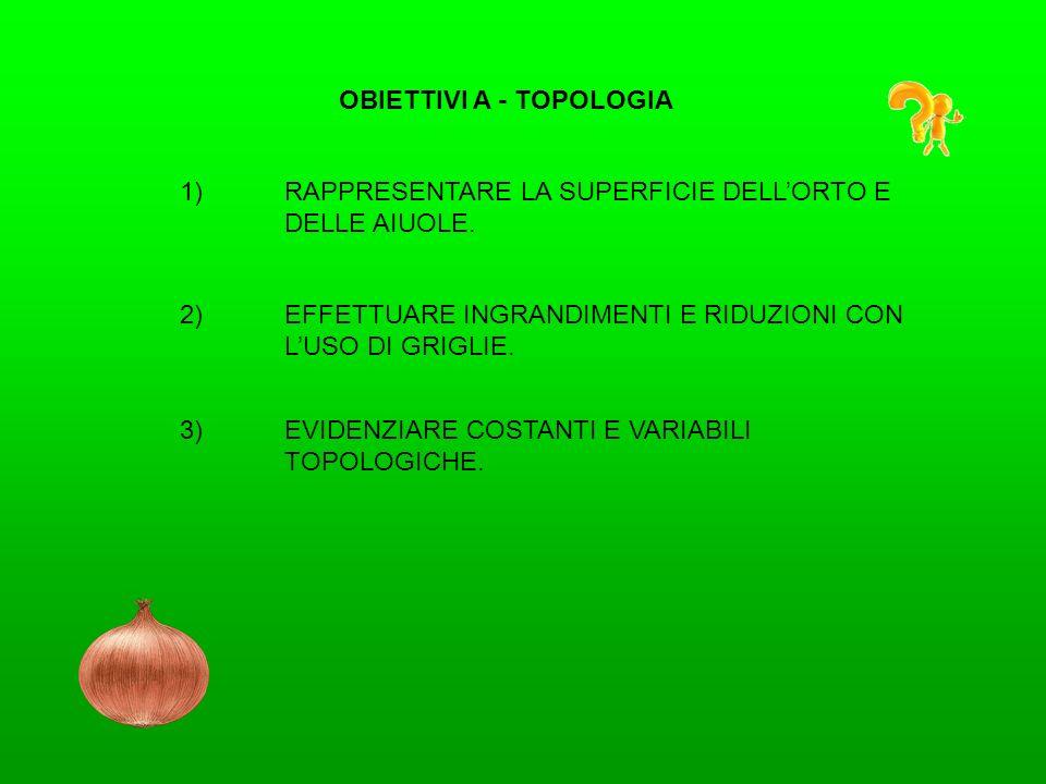 OBIETTIVI A - TOPOLOGIA 1)RAPPRESENTARE LA SUPERFICIE DELLORTO E DELLE AIUOLE. 2)EFFETTUARE INGRANDIMENTI E RIDUZIONI CON LUSO DI GRIGLIE. 3)EVIDENZIA