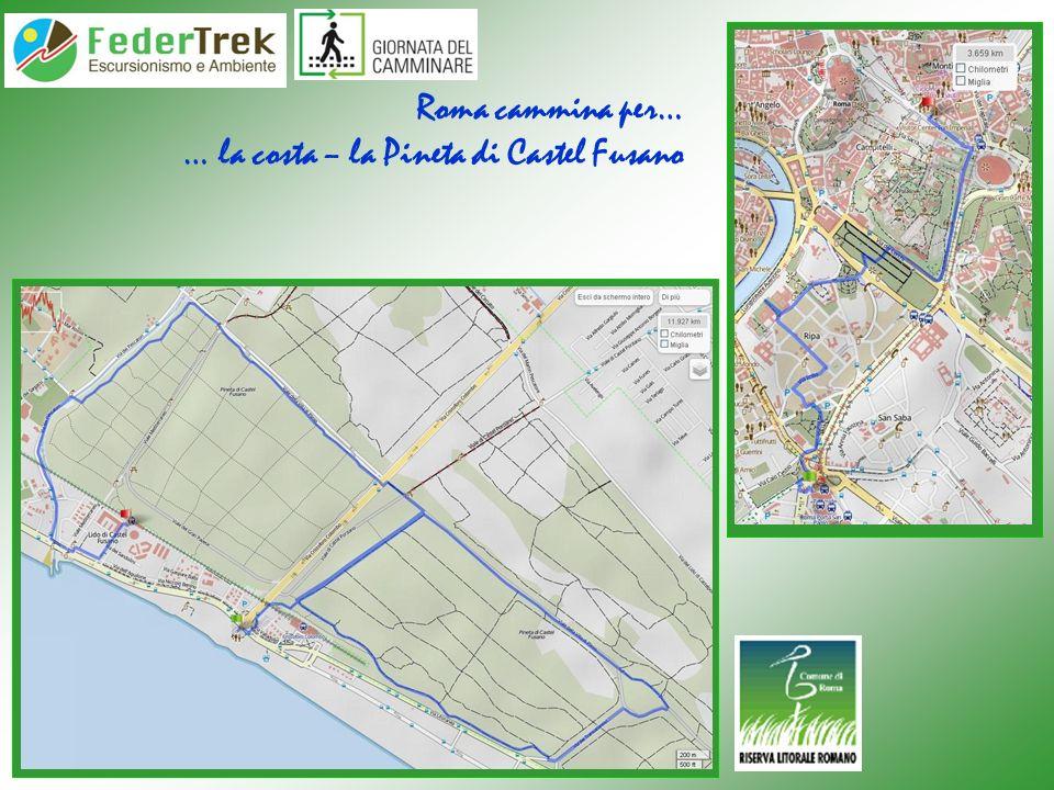 Roma cammina per… … la costa – la Pineta di Castel Fusano