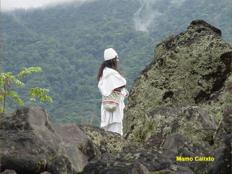 Gli ARHUACO condividono la Sierra Nevada de Santa Marta con i Kogi, i Wiwa, e i Kankuamos e anno accesso diretto al mar dei Caraibi.