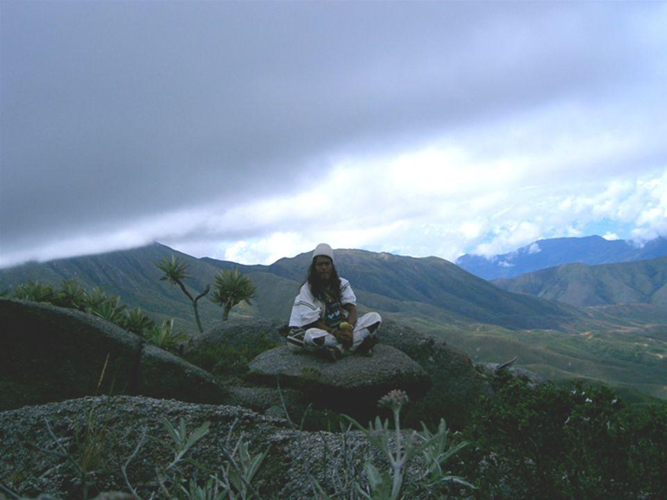Il loro territorio fa parte di tre Dipartimenti della Colombia: Magdalena, Guajira e Cesar.