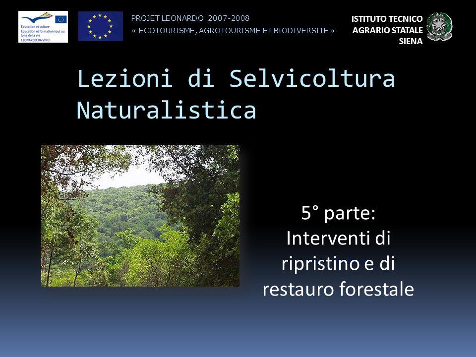 Lezioni di Selvicoltura Naturalistica Prof. Luigi Marini ISTITUTO TECNICO AGRARIO STATALE SIENA PROJET LEONARDO 2007-2008 « ECOTOURISME, AGROTOURISME