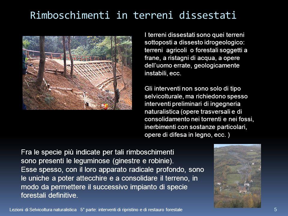 Lezioni di Selvicoltura naturalistica 5° parte: interventi di ripristino e di restauro forestale 5 Rimboschimenti in terreni dissestati I terreni diss