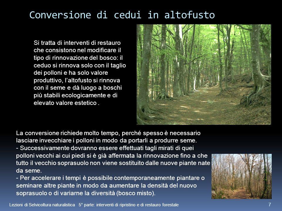 Lezioni di Selvicoltura naturalistica 5° parte: interventi di ripristino e di restauro forestale 7 Conversione di cedui in altofusto Si tratta di inte