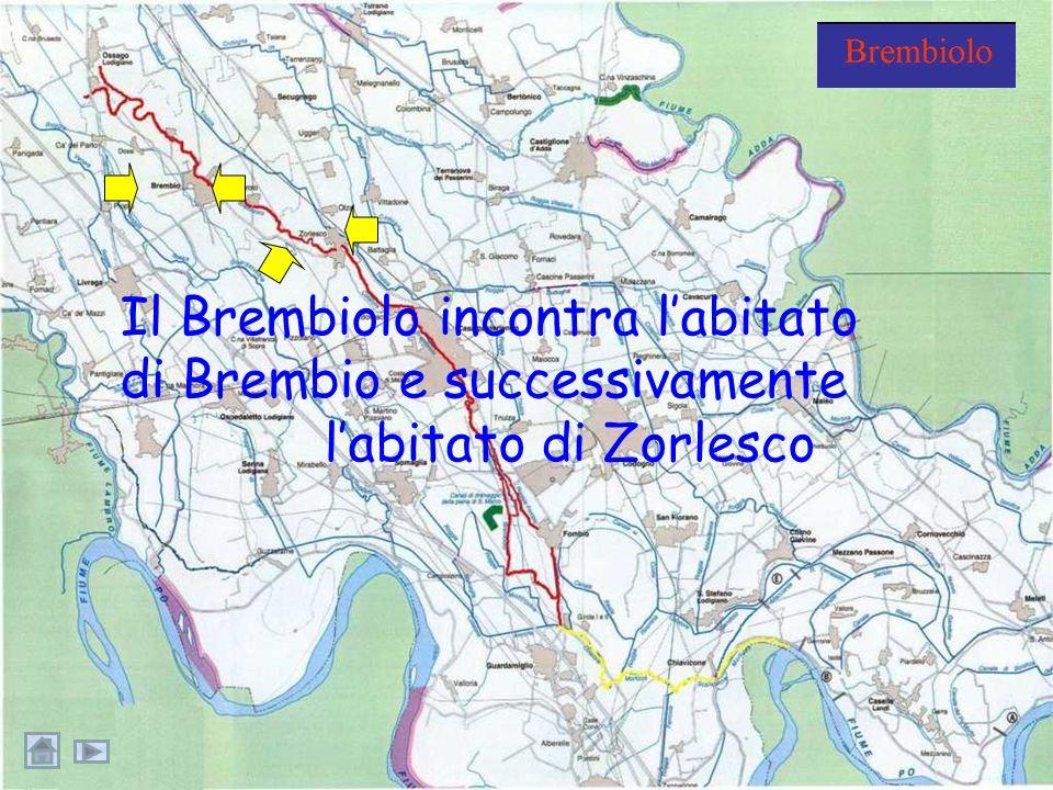 Il Brembiolo si snoda lungo la campagna, si ingrossa e raccoglie piccole rogge e acque reflueroggeacque reflue