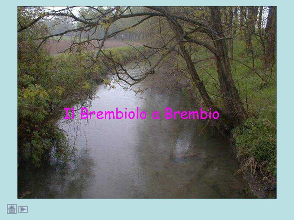 Il Brembiolo incontra labitato di Brembio e successivamente labitato di Zorlesco
