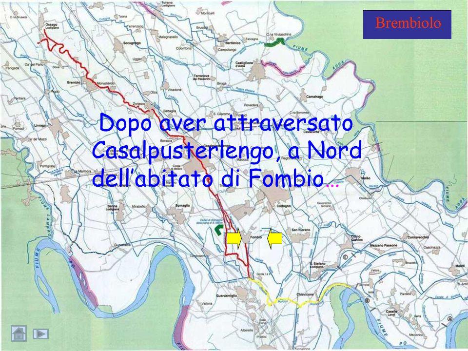 Nel 2001 è stato istituito dai comuni di Casale, Fombio e Somaglia il parco fluviale del Brembiolo: un ambiente ecologicamente compatibile con la faun