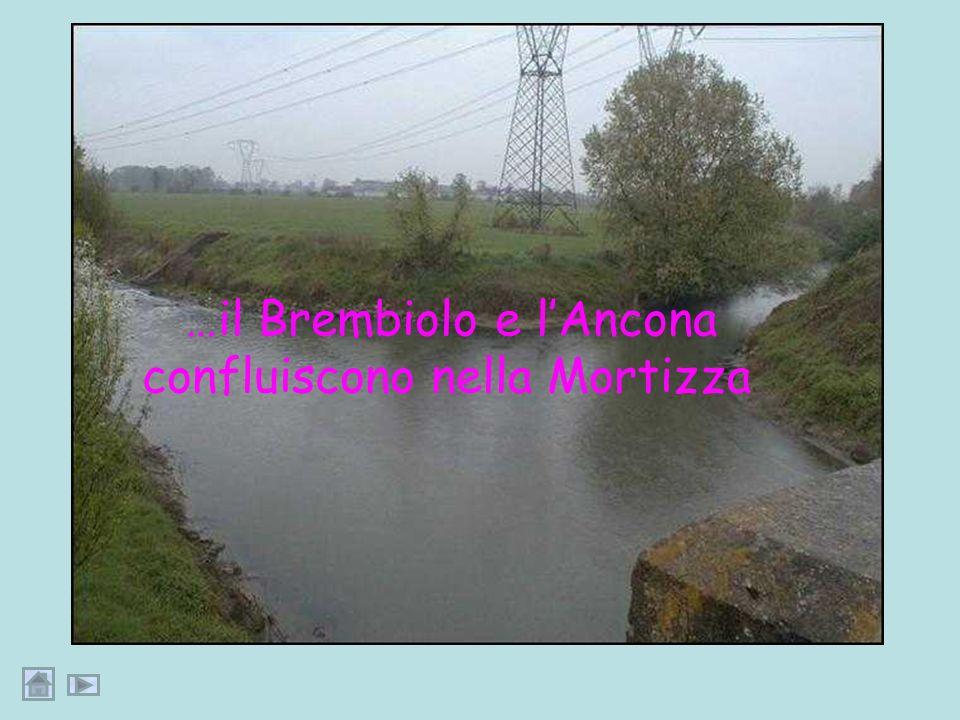 In comune di Guardamiglio, in località Monticchie, Il Brembiolo si unisce ad un altro colatore, lAncona, originando il colatore Mortizza