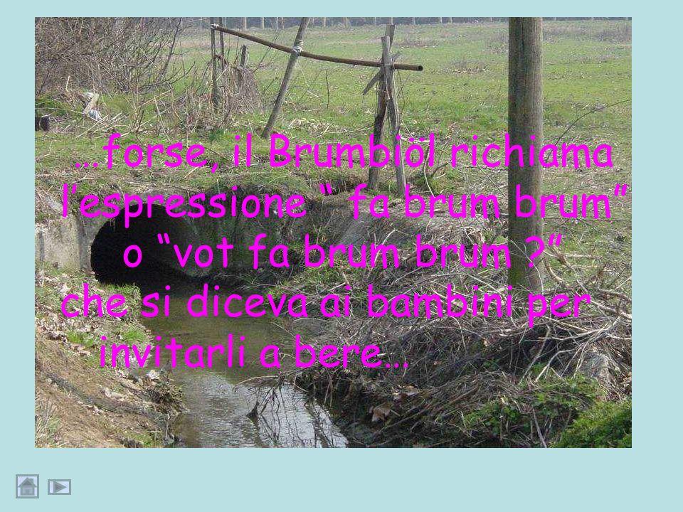 …dunque il Brembiöl era anticamente una brembilla, una derivazione secondaria del fiume Brembo…