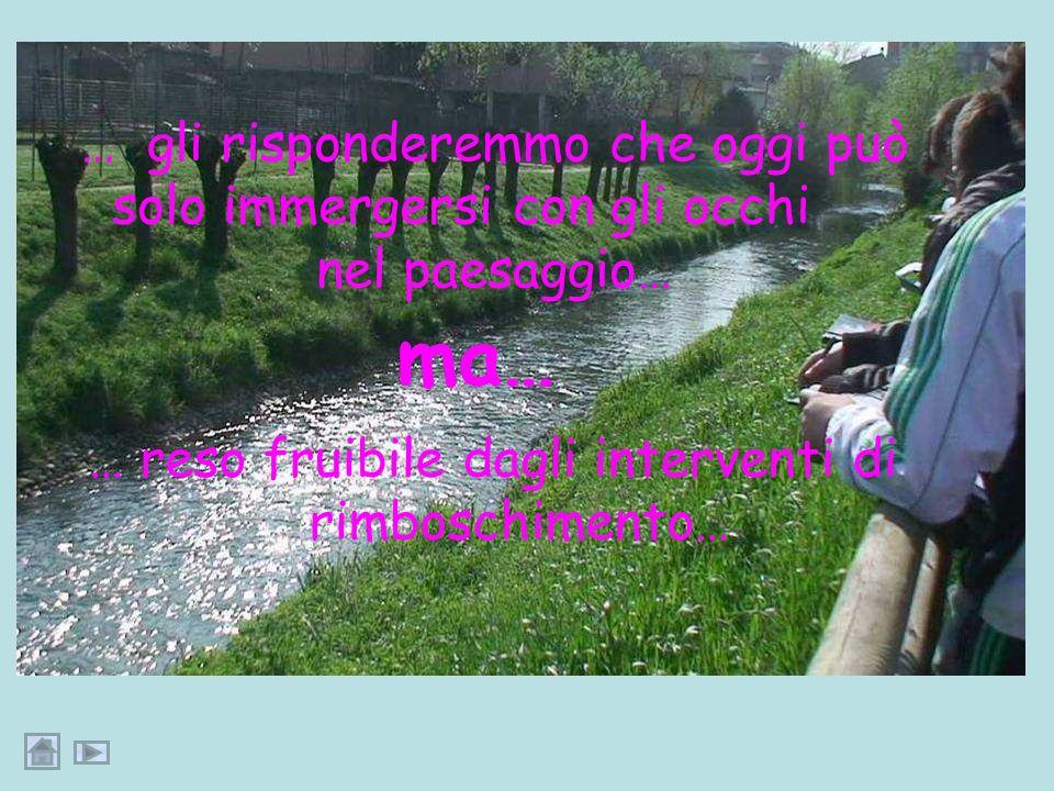 Se il nostro viaggiatore, passeggiando lungo le nuove piste pedonali, volesse bagnarsi nelle acque del Brembiolo…
