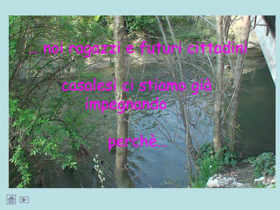 … gli risponderemmo che oggi può solo immergersi con gli occhi nel paesaggio… ma… … reso fruibile dagli interventi di rimboschimento…