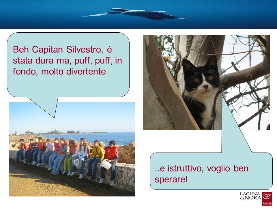 Beh Capitan Silvestro, è stata dura ma, puff, puff, in fondo, molto divertente..e istruttivo, voglio ben sperare!