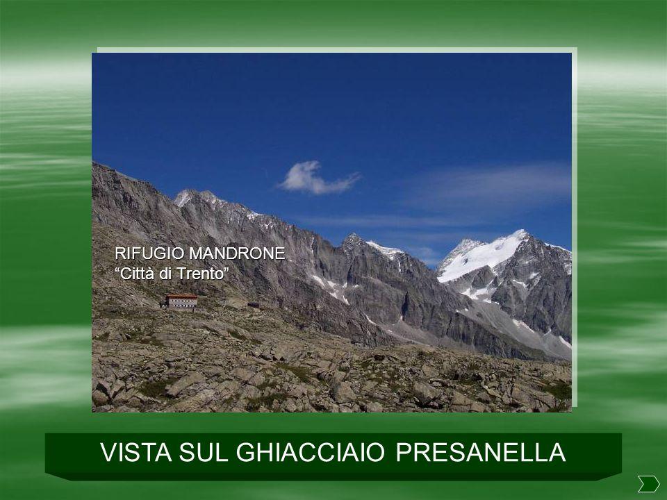 RIFUGIO MANDRONE – GHIACCIAIO RIFUGIO MANDRONE GHIACCIAIO ADAMELLO