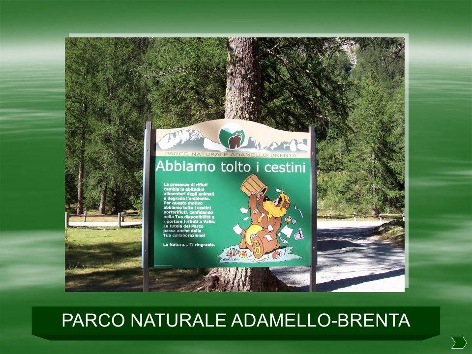Val di Genova PINZOLO – RIFUGIO BEDOLE mt. 1641 in auto PINZOLO RIFUGIO BEDOLE