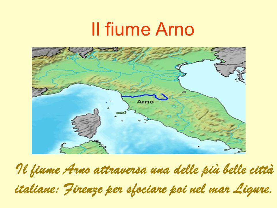 Il fiume Arno Il fiume Arno attraversa una delle più belle città italiane: Firenze per sfociare poi nel mar Ligure.