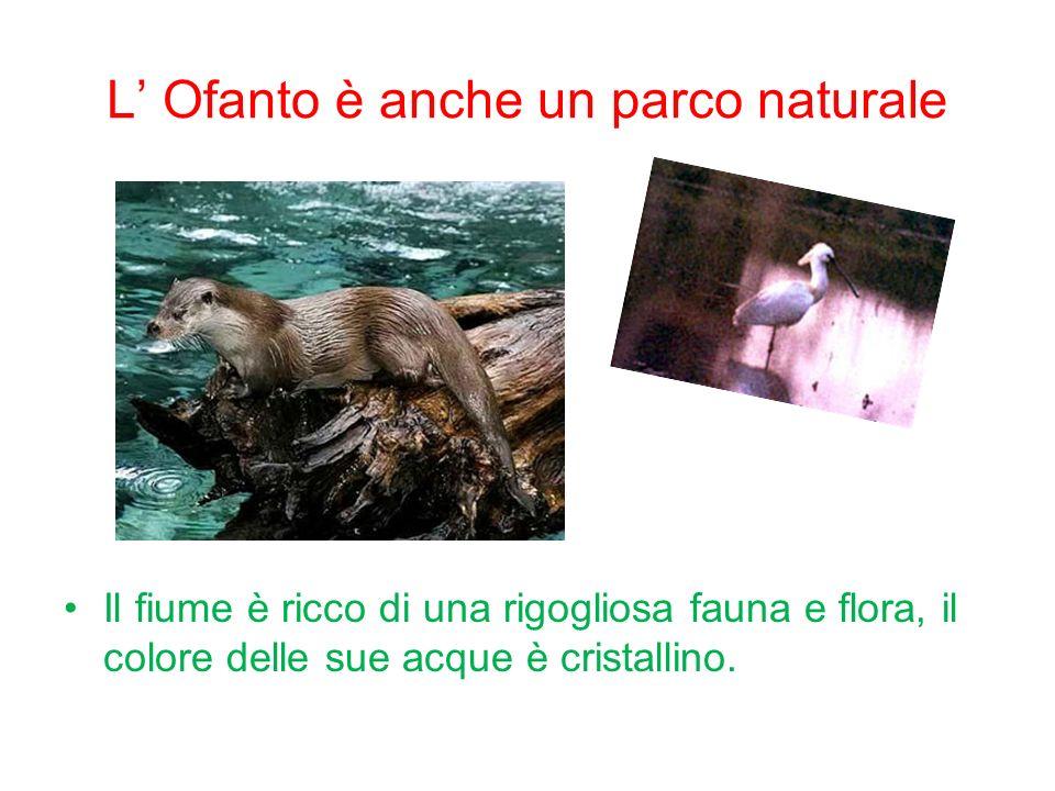 L Ofanto è anche un parco naturale Il fiume è ricco di una rigogliosa fauna e flora, il colore delle sue acque è cristallino.