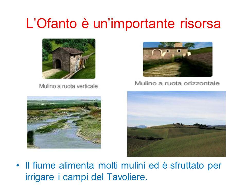 LOfanto è unimportante risorsa Il fiume alimenta molti mulini ed è sfruttato per irrigare i campi del Tavoliere.