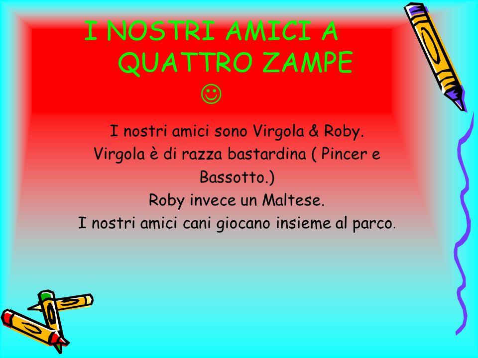 I NOSTRI AMICI A QUATTRO ZAMPE I nostri amici sono Virgola & Roby. Virgola è di razza bastardina ( Pincer e Bassotto.) Roby invece un Maltese. I nostr